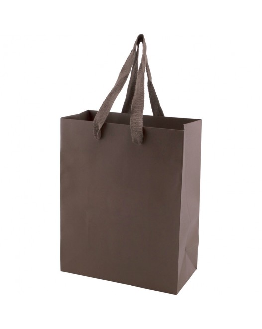NON-LAMINATED TINTED KRAFT SHOPPING BAGS