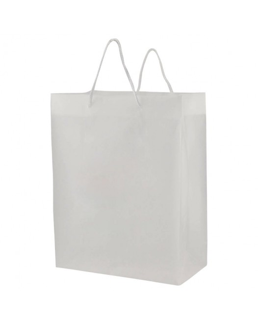 FROSTED EUROTOTE BAGS